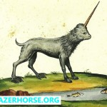 Unicorns - Old Pictures - Ulisse Aldrovandi - 1658