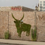Moss Graffiti - Big Horn Cattle - The New School