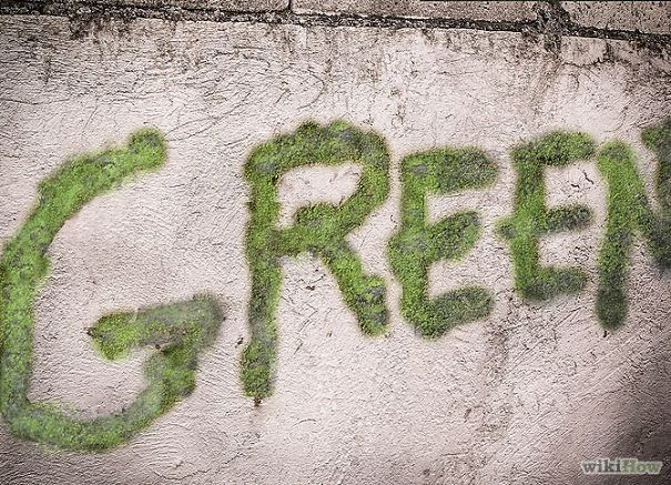 moss-graffiti-green