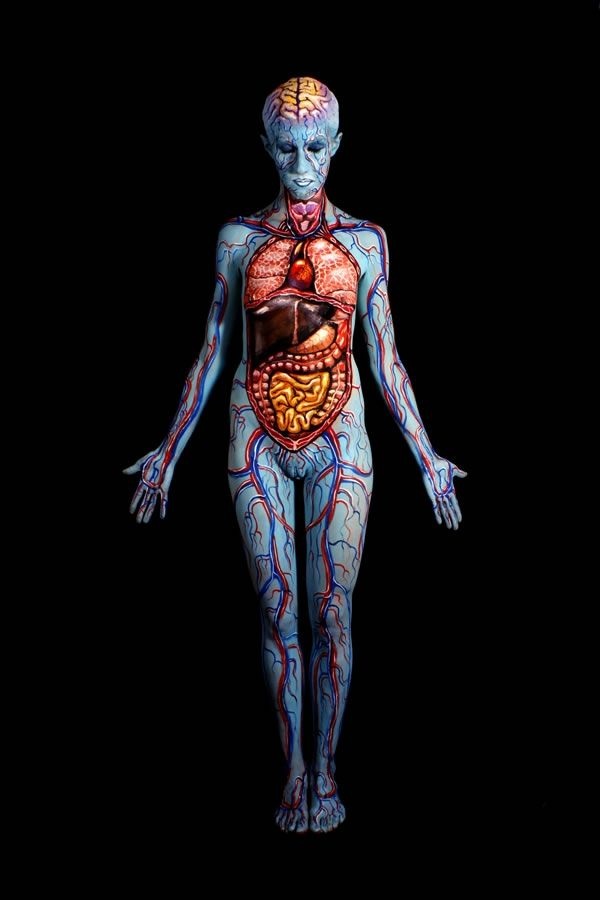 Johannes-Stotter-body-painting - anatomy