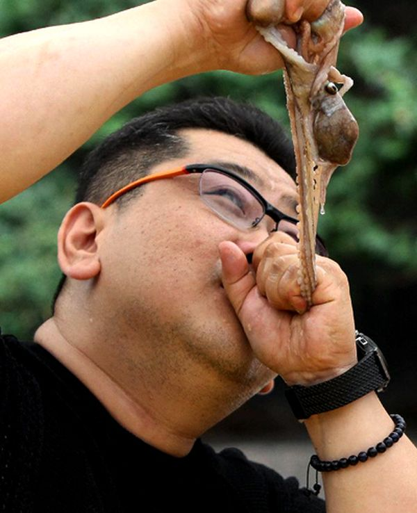 Watch South Koreans Eating Live Octopus Lazer Horse