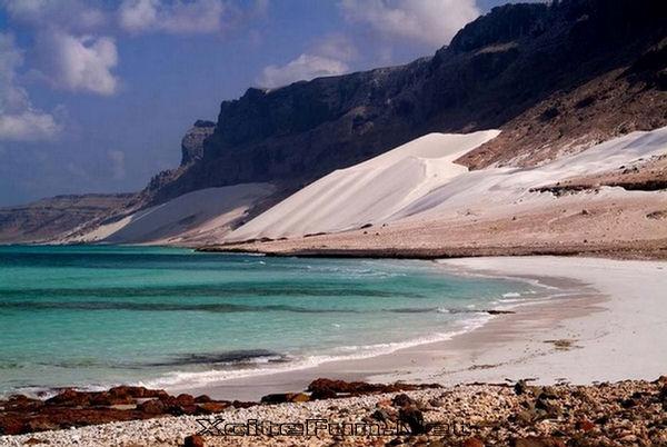 Socotra - alien landscape - Yemen - desert