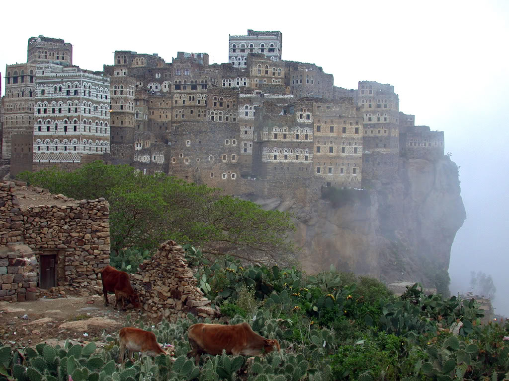 socotra - town