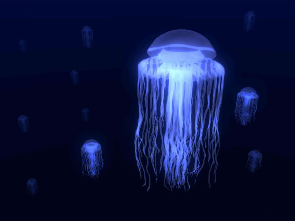 Jellyfish: Lovely To Look At, Horrible To Touch • Lazer Horse - photo#18