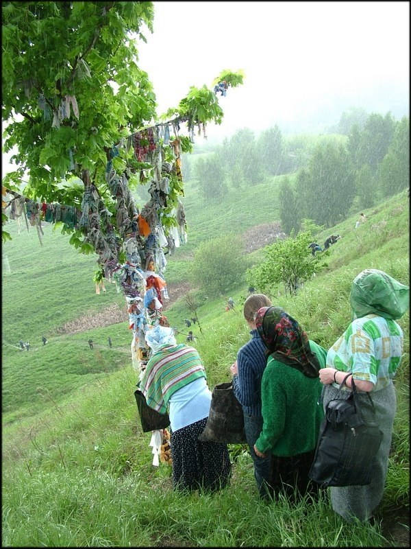 Russian Village Everyday Life - wishing tree