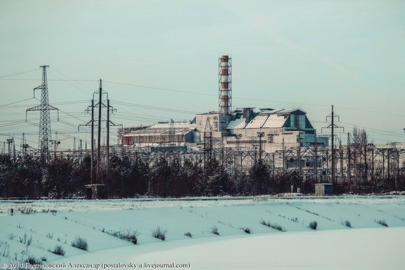 Chernobyl In Winter - Plant