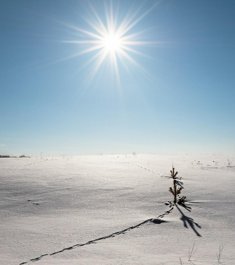 Winter In Russia Vladimir Chuprikov - tracks