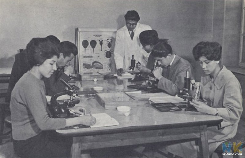 Afghanistan 50s 60s - women studying