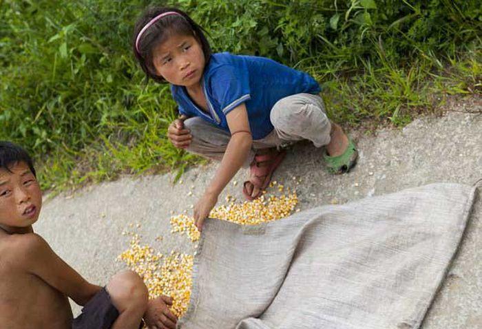 North Korea Rare Deleted Photos - spilled corn