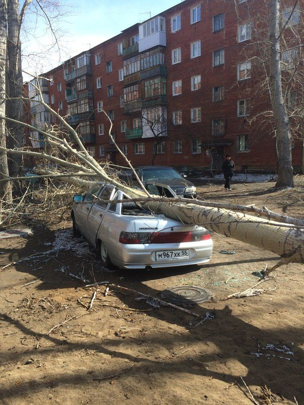 Omsk High Winds Russia - tree smashes car up