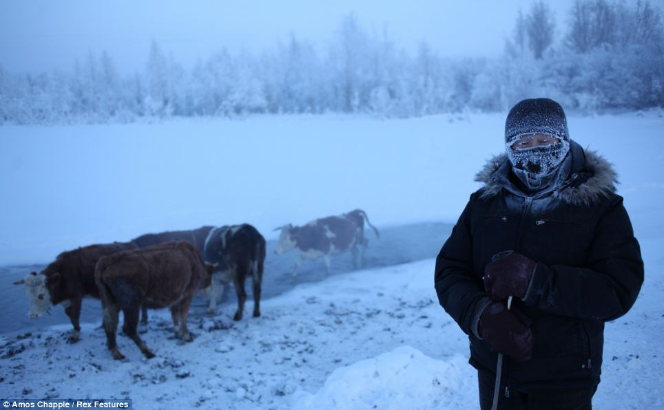 Oymyakon - coldest village town - Farmer