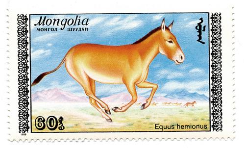 Stamp Mongolia - Horse