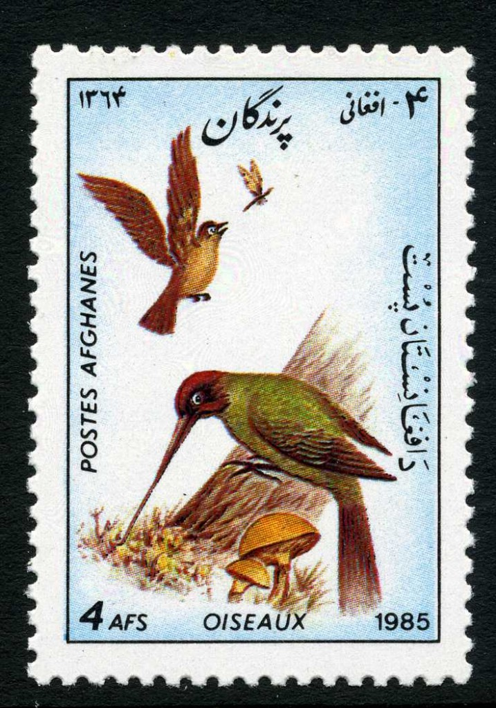 Strange Stamps - Fungus - Afghanistan and woodpecker