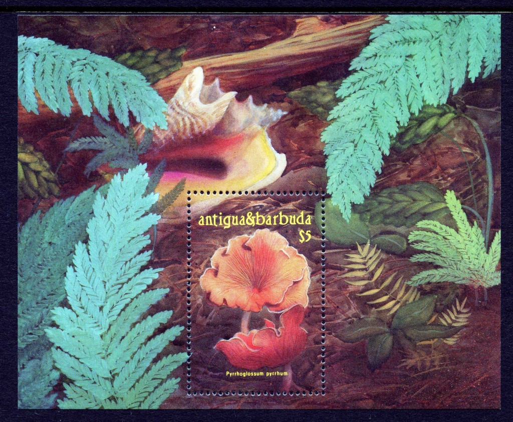 Strange Stamps - Fungus - Antigua