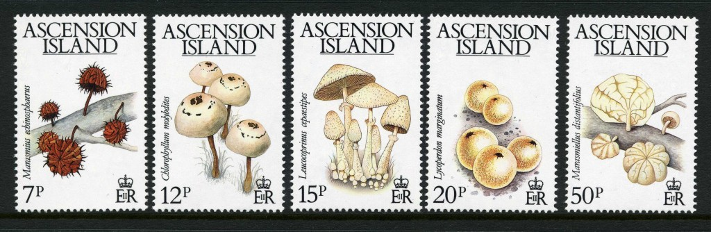 Strange Stamps - Fungus - Ascension Island