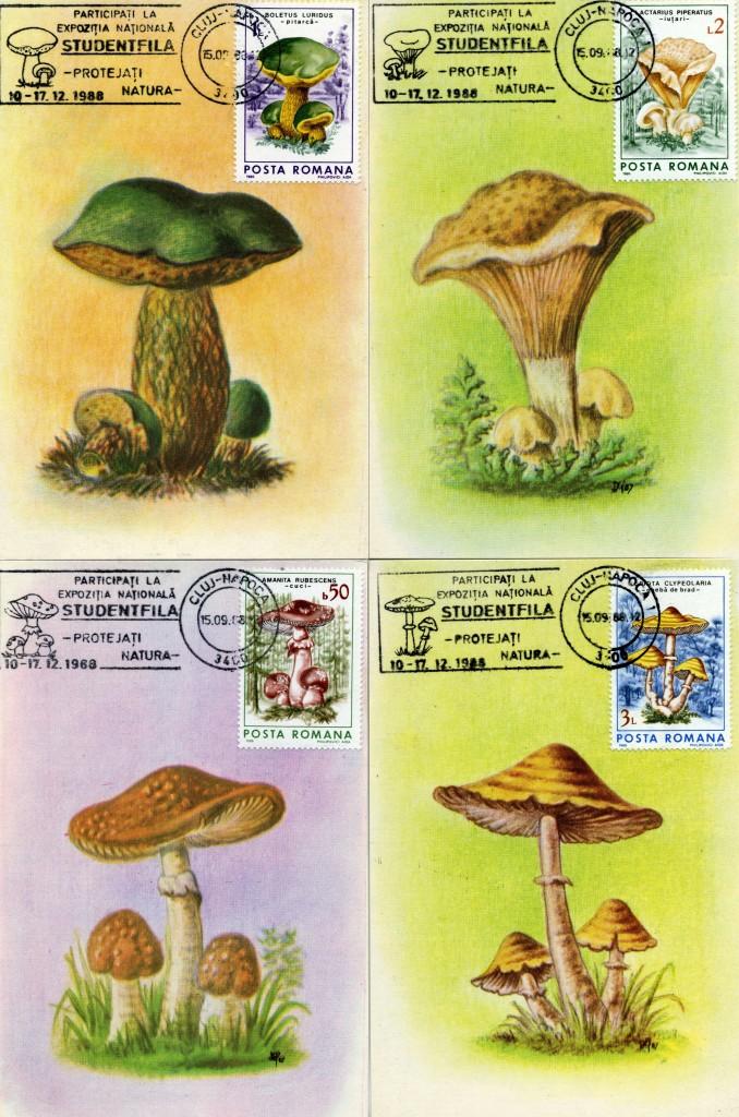 Strange Stamps - Fungus - Romania + envelope