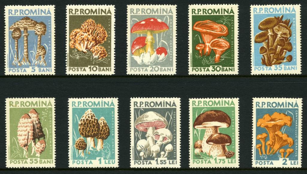 Strange Stamps - Fungus - Romania