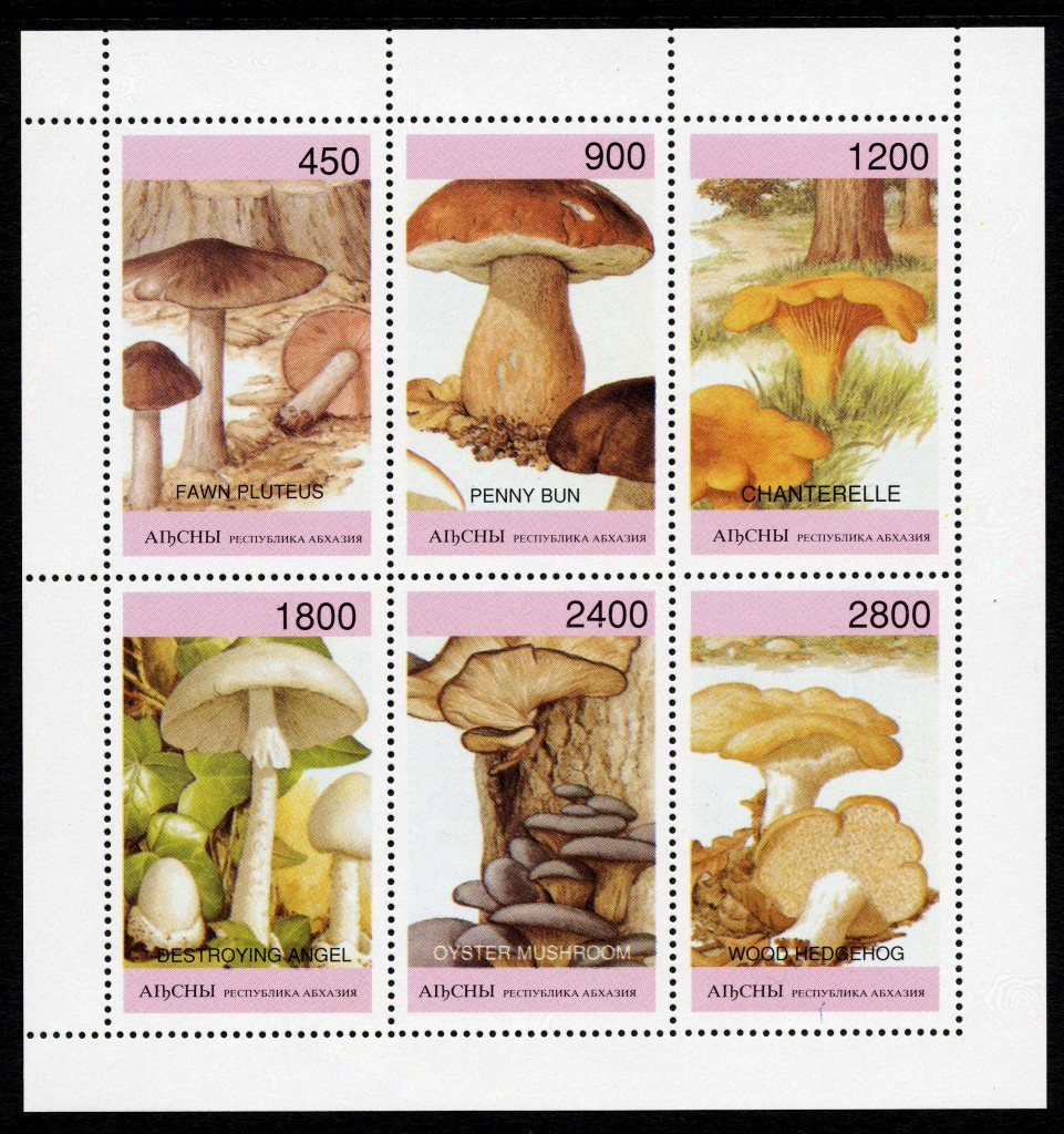 Strange Stamps - Fungus - Russian Federation - Abkhazia