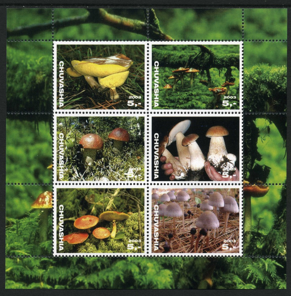 Strange Stamps - Fungus - Russian Federation - Chuvashia