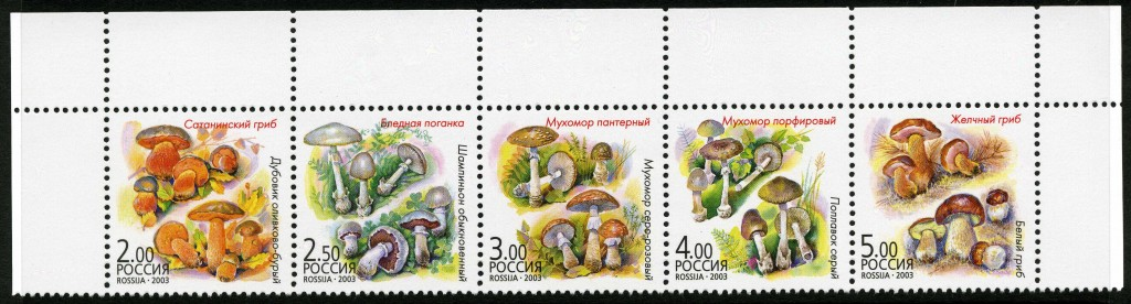 Strange Stamps - Fungus - Russian Federation - Soviet Union