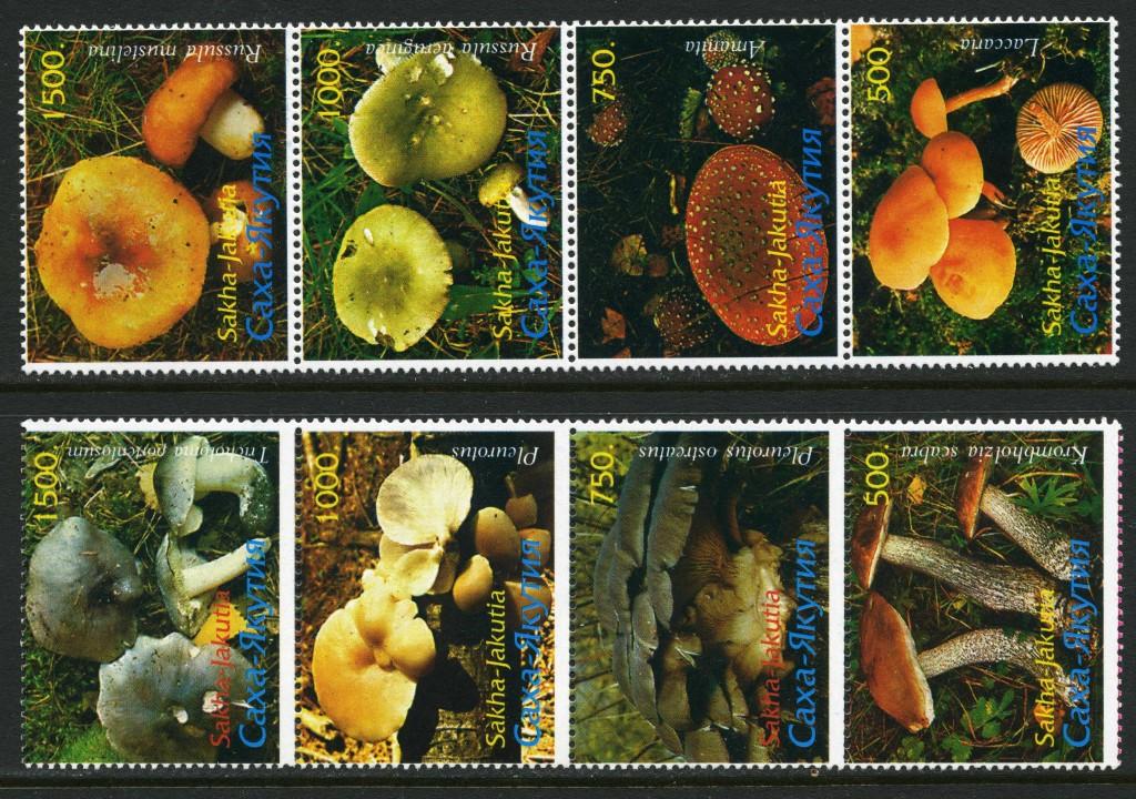 Strange Stamps - Fungus - Russian Federation - Yakutia