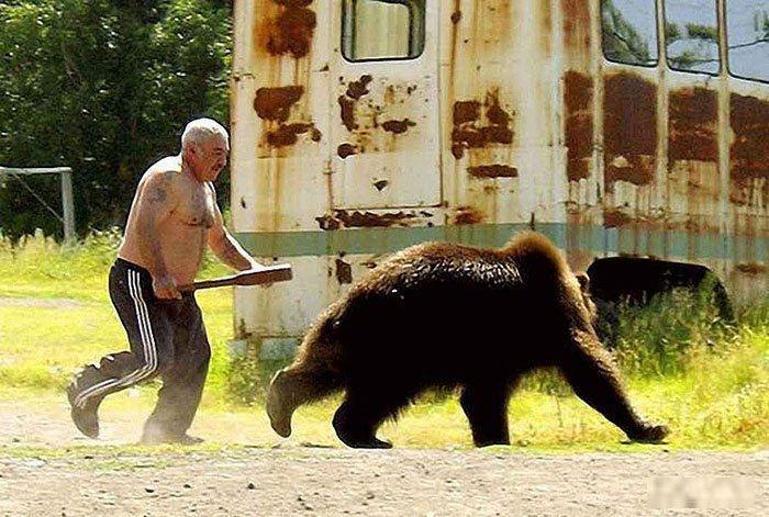 Chasing Bear With Baseball Bat