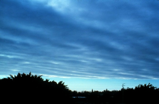 Clouds - How To Predict Weather - Stratus