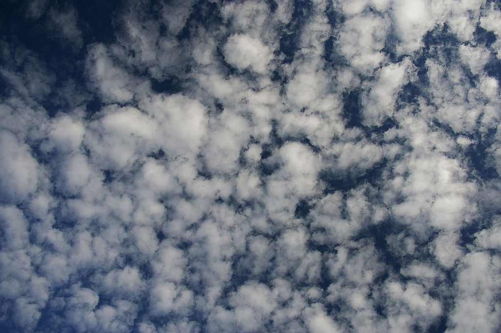 Clouds - How To Predict Weather - altocumulus