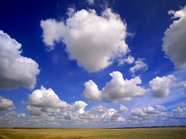 Clouds - How To Predict Weather - cumulus