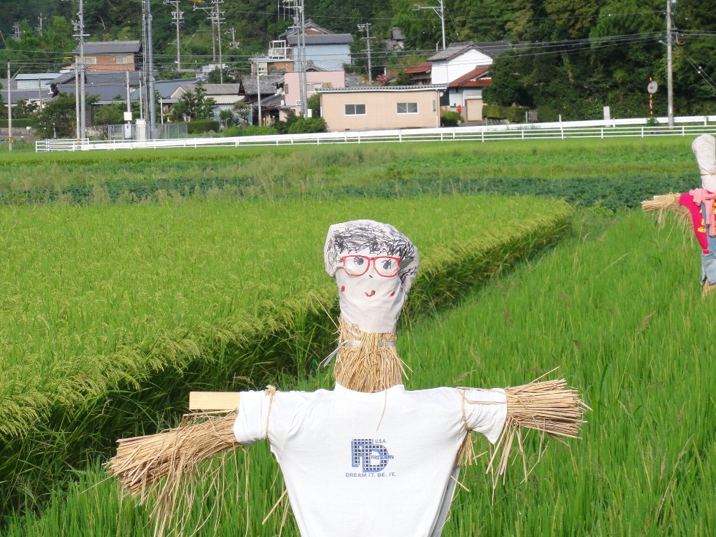 Japanese Scarecrow - bloke with glasses