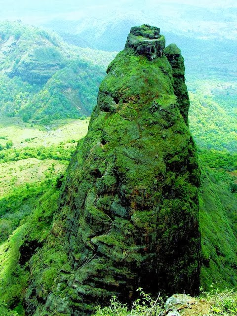 Kalavantin Durg - India Dangerous Fort - grassy