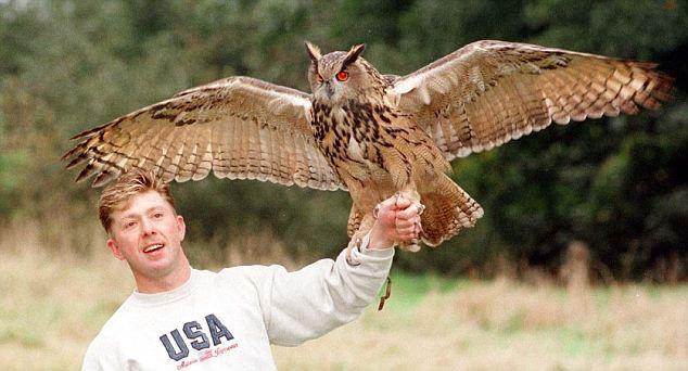 Owlman Cornwal Mawnan Eagle Owl