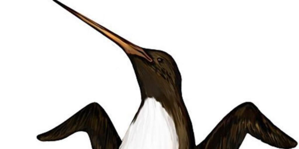 Mega Penguin 6ft tall