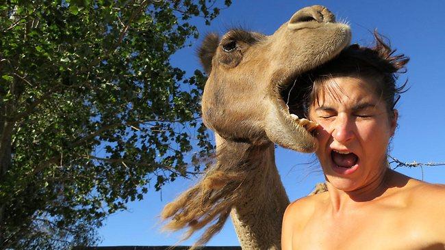 http://www.lazerhorse.org/wp-content/uploads/2014/08/Selfie-Global-Best-Of.jpg