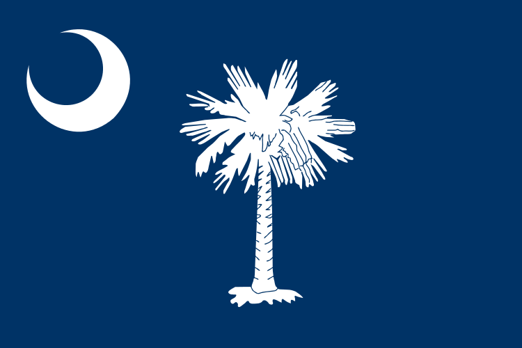 USA State Flags Best - South Carolina