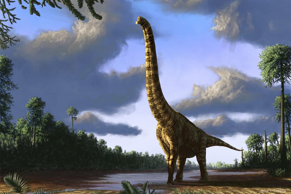 Best Paleoart - Julius Csotonyi Brachiosaurus