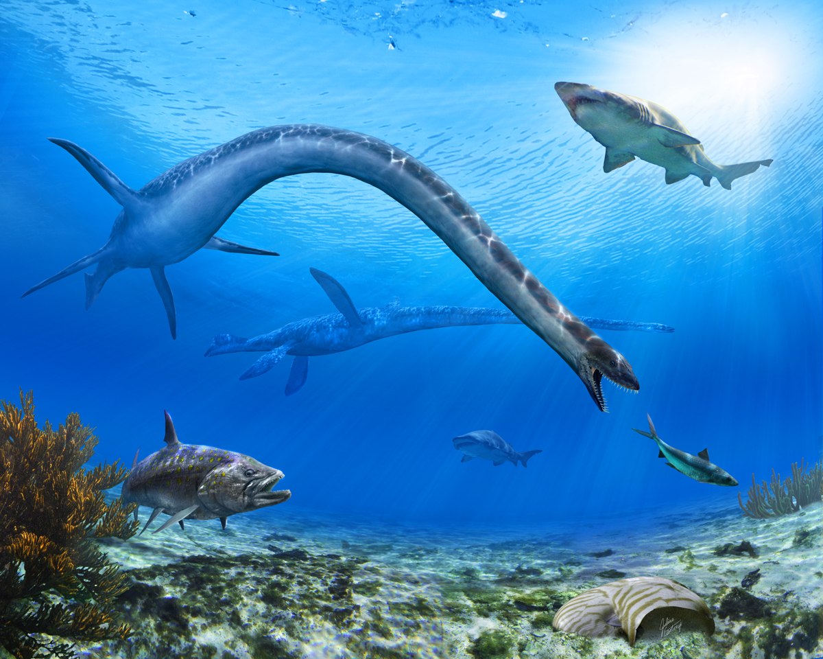 Best Paleoart - Julius Csotonyi underwater scene