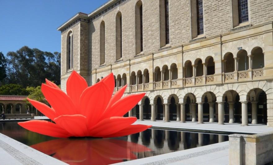 Choi Jeong Hwa – Moving Flower, Perth