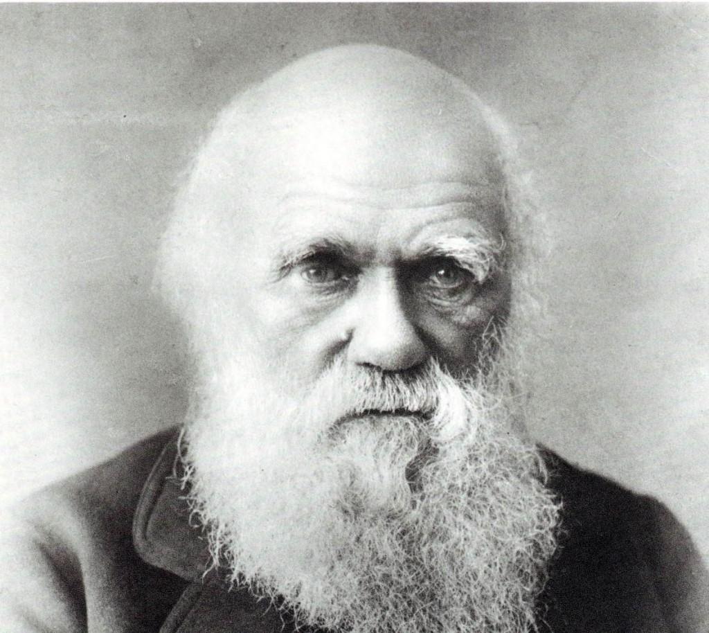 Darwin - Evolution in brief