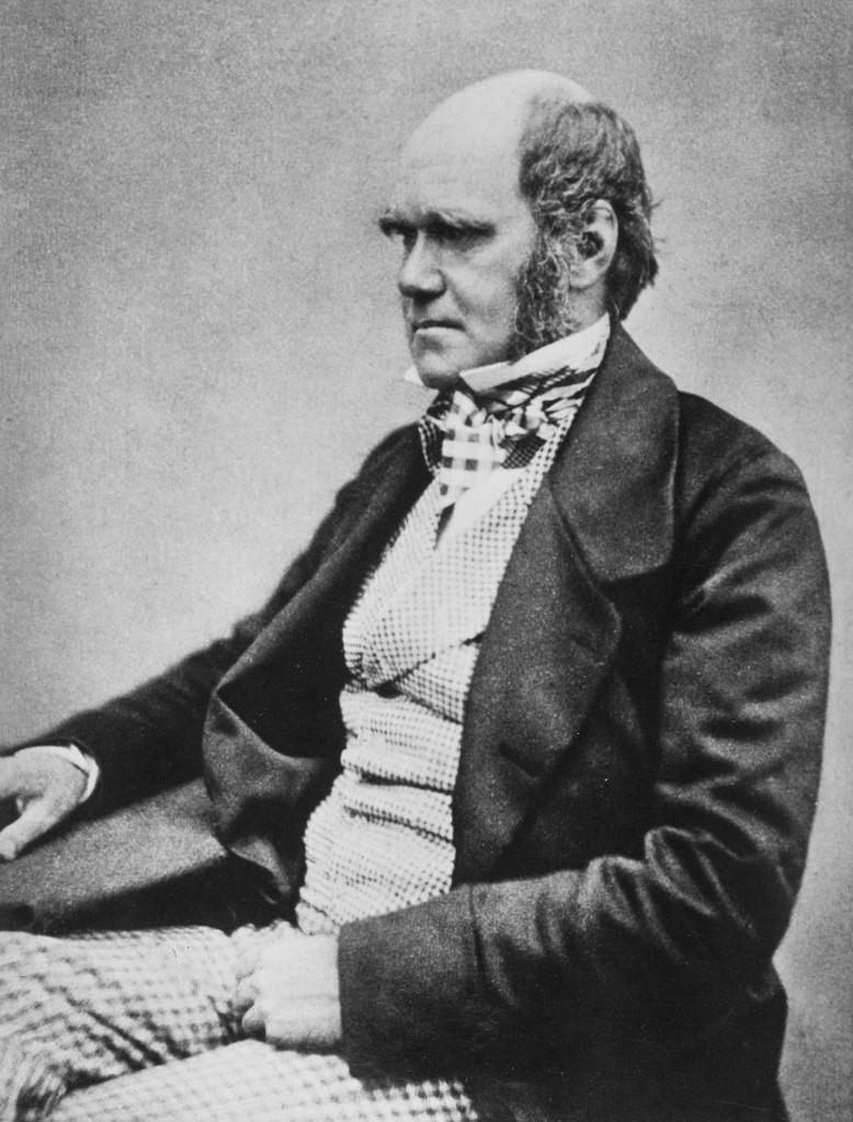 Darwin - Evolution in summary