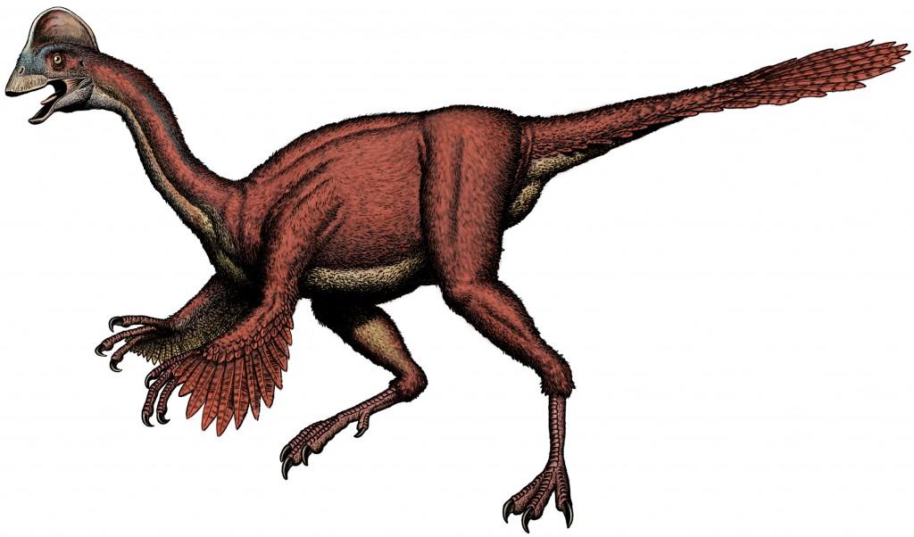 Feathered dinosaur - Anzu wyliei