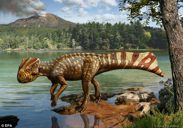 Misc - Koreaceratops hwaseongensis