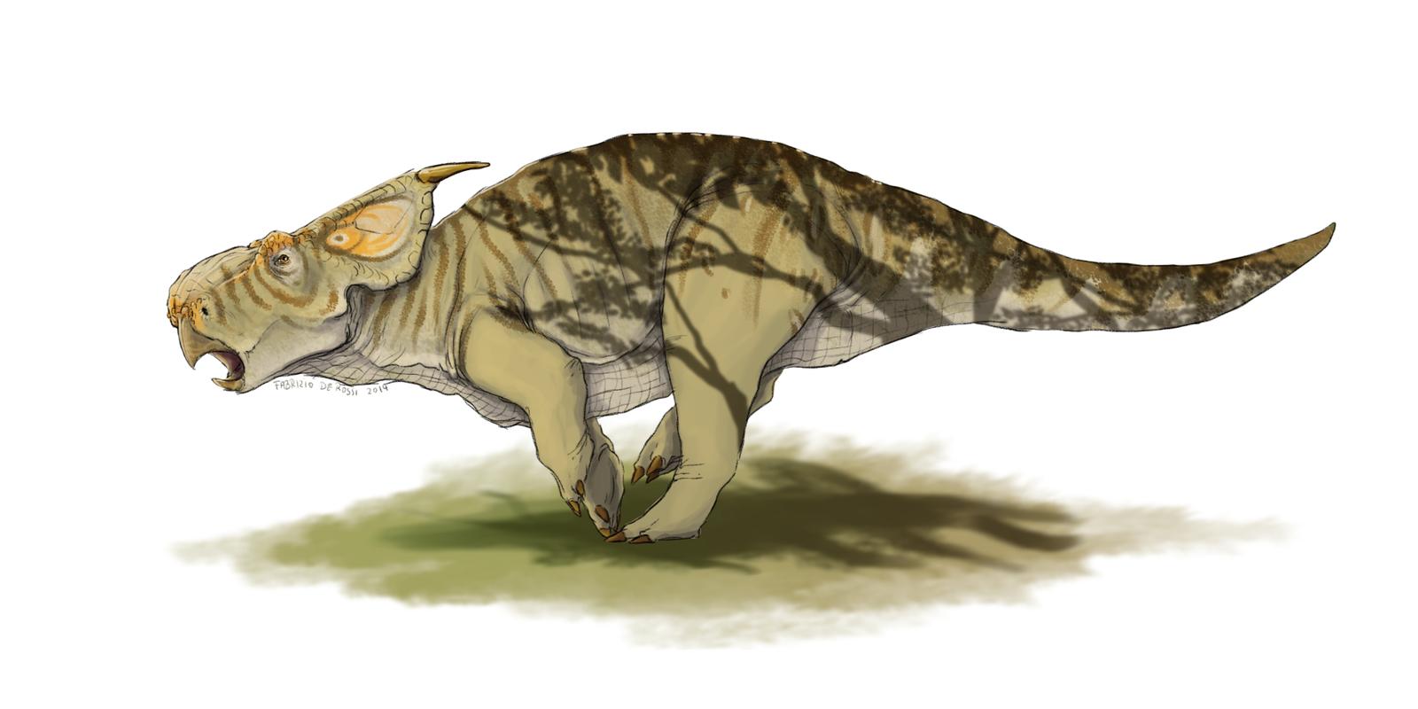 Parasaurolophus cyrtocristatus - FabrizioDeRossi