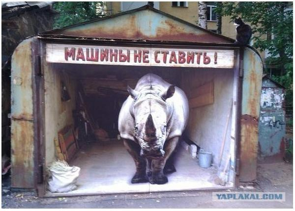 Rhino Painting in russia