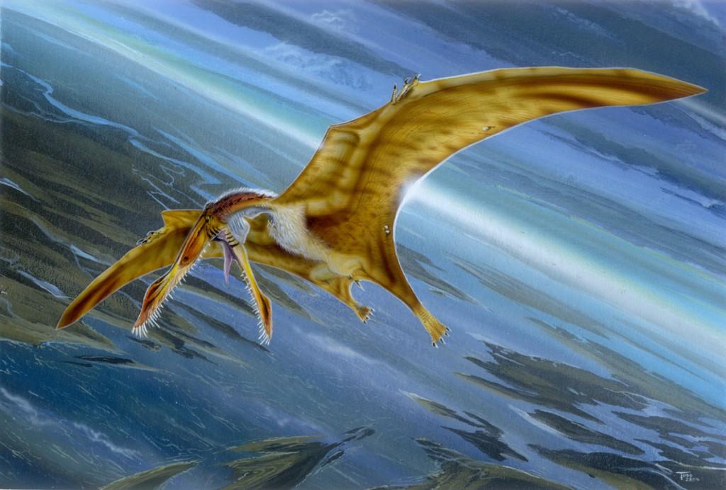 Ropen - Pterosaur