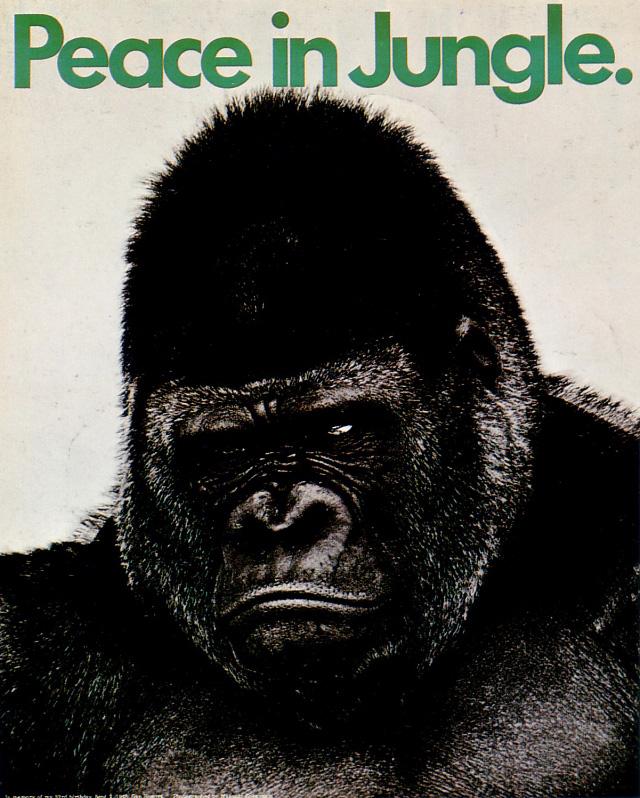 Vintage Japanese political posters - Peace in Jungle - Gan Hosoya, 1968