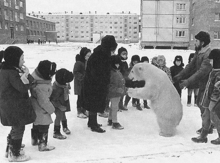 Best Russia Pictures - Explorer With Polar Bear at school