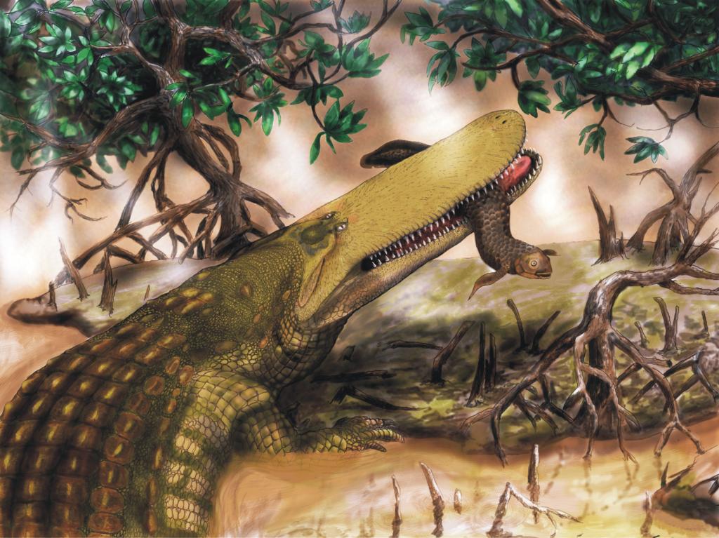 Kem Kem Beds -  Aegisuchus