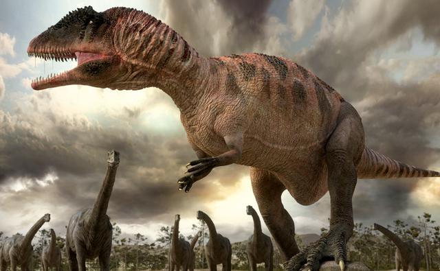 Kem Kem Beds -  Carcharodontosaurus