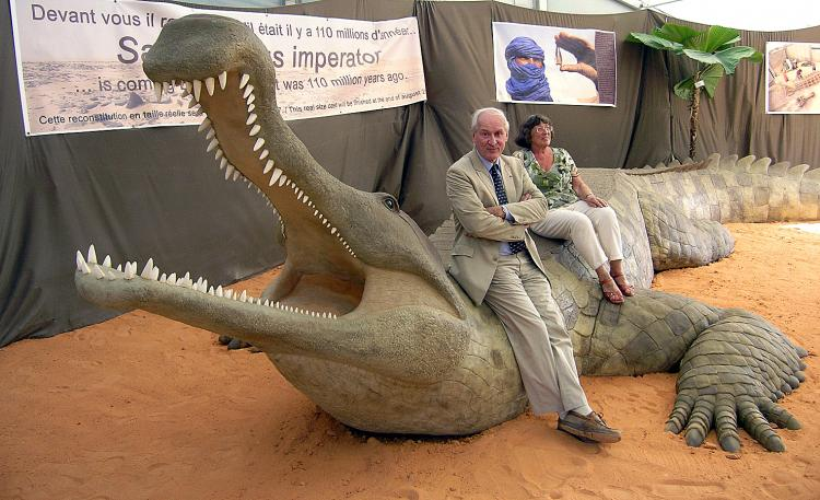 Kem Kem Morocco -  Aegisuchus